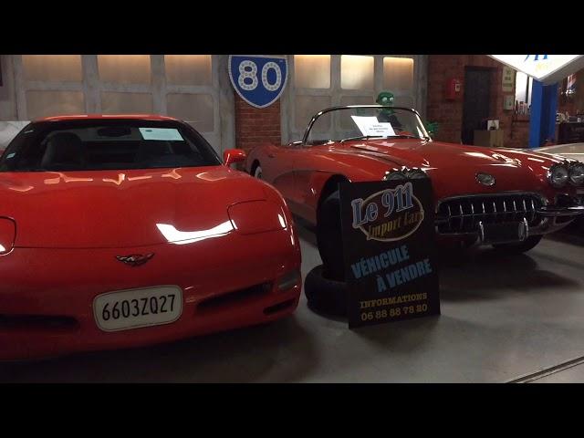 LE 911 PERPIGNAN - GRIZZLYS TV