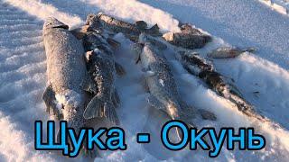 Подлёдная рыбалка на озере Натаскали щук и окуней Зимняя рыбалка с ночевкой в избе