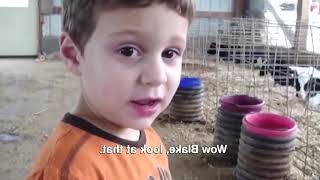 Top 10 Funniest moment between babies and animals #2| Funny Babies and Pets