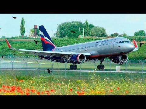 Plane Spotting | Chisinau International Airport (KIV/LUKK) | Moldova | 31.05.2016