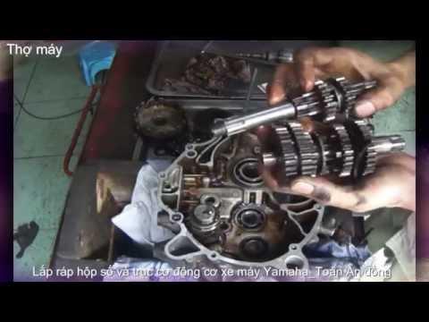 Lắp ráp hộp số và trục cơ động cơ xe máy Yamaha_ Toàn An đồng (P1)