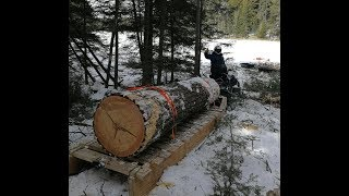 Sleighs and Komatiks: Hauling Heavy Loads in the Snow!