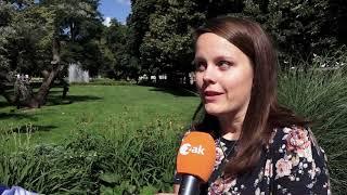 Plzeň v kostce (29.6.-5.7.2020)