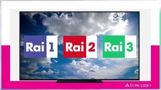 Campagna tv 8/04 - 11/04 rai 1 2 3 dettaglio passaggi