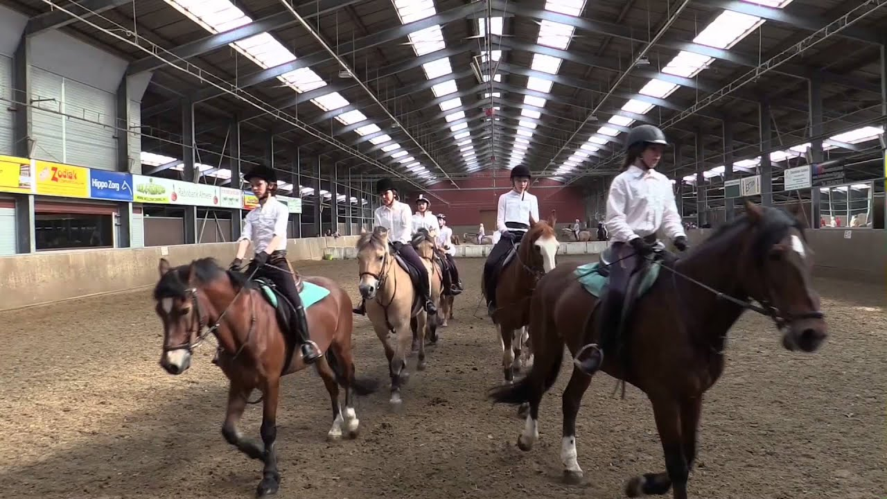 Paarden Carrousel April 2014 Youtube