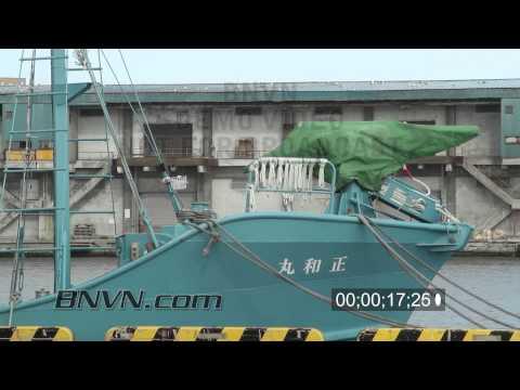 5/12/2011 Kushiro Japan Whaling Ships B-Roll