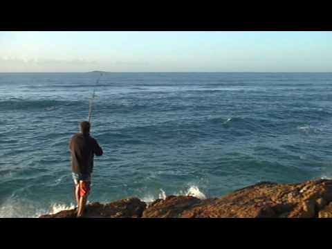 Tailor Fishing On The NSW North Coast