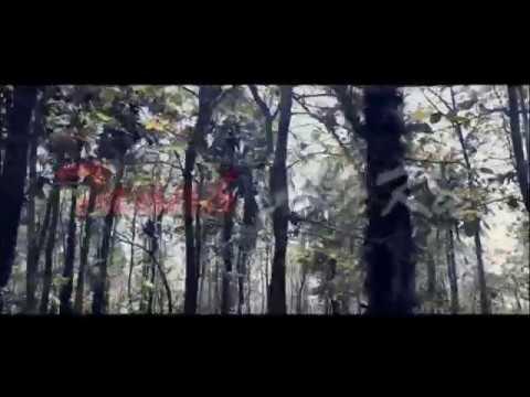 Tanah Air ku - Song by Angklung Hamburg