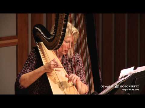 Londonderry Air - Danny Boy Song - Instrumental Flute & Harp Irish Music - Live Performance Solo