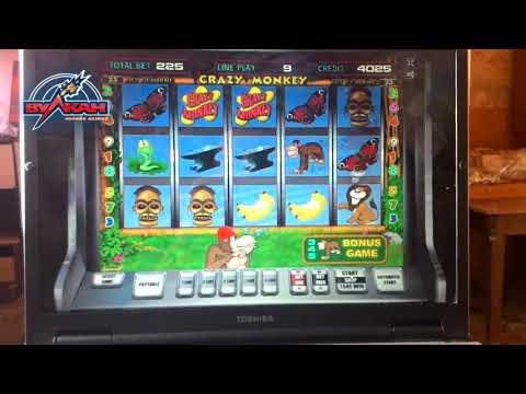 Мошенники выигрывают в игровой автомат Обезьянки. Казино вулкан рулетка играть бесплатно.