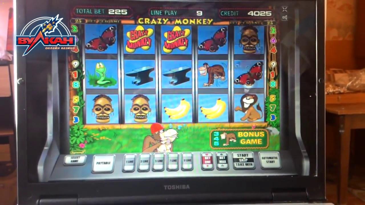 в 1 х бет казино обезьянки 72