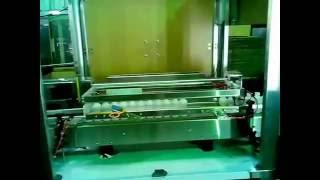 Automatic Bottle Rinsing Machine-Air Type
