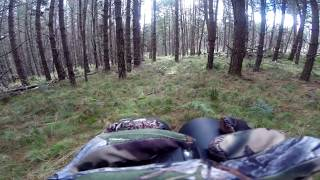 NSW State Forest Hunting Adventure