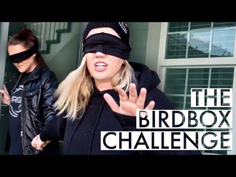 Birdbox Challenge