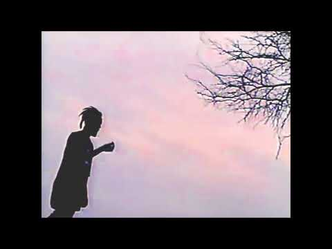 $UICIDEBOY$ CHILL/SAD MIX PART II