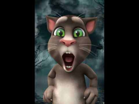 Я схожу сума кот том