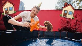 Alfie und ich feiern Geburtstag im HIVE
