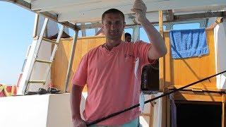 Лазаревское 2017 | Рыбалка с катера АНТЕЙ | День 6 часть 1