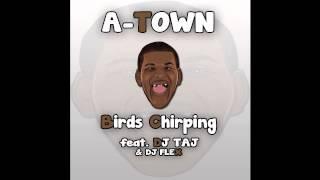 Atown Birds Chirping - Dj Taj feat. DeeJayFlex973 #EmpireMusic @DjLilTaj @TheRealDjFlex
