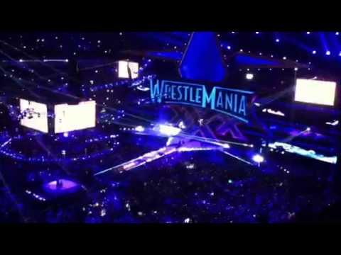 Undertaker wm30