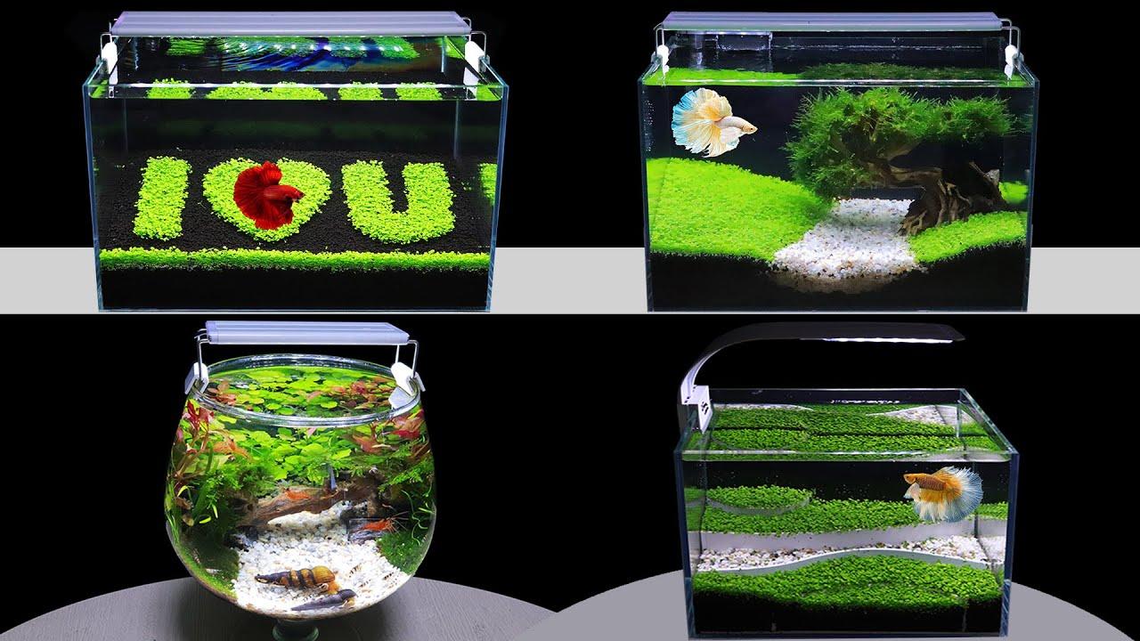 Top 5 Aquarium Decoration Ideas Diy Aquascape How To Make Nano Fish Tank From Seeds At Home Youtube