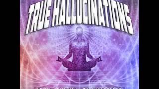 True Hallucinations @ Dice Radio - Laughing Buddha Special