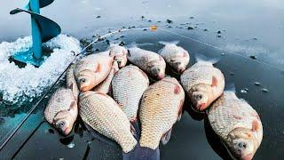 Мы думали ОН не клюет а ОН поднялся выше Ловля карася зимой Зимняя рыбалка 2021