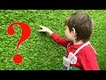 UNDE A FOST BOGDAN? Vlog   Bogdan's Show