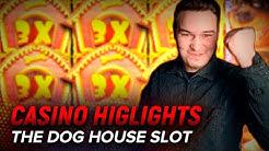 Casino BONUS im THE DOG HOUSE SLOT