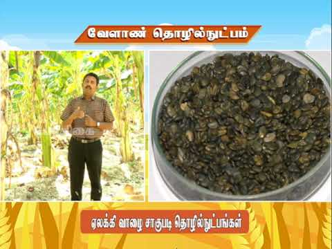 Download Pon Vilaiyum Bhoomi (08.06.2021) Agricultural Technology: