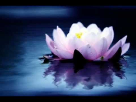 мантра любви deva premal текст. Слушать песню Индийские мантры в исполнении Deva Premal - Moola Mantra (Hari Om Tat Sat) Эта мантра пробуждает живого Бога, прося защиты и свободы от горя и страданий. Это молитва к великому творцу и освободителю, который и
