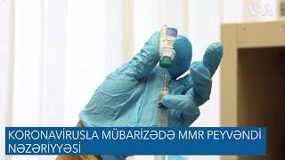 Koronavirusla mübarizədə MMR peyvəndi nəzəriyyəsi