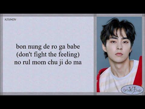 EXO (엑소) - Don't fight the feeling (Easy Lyrics)