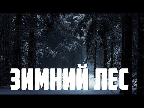 Страшные истории - Зимний лес