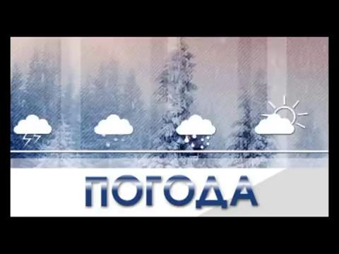 Видео Прогноз погоды в киеве