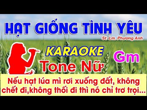 Hạt Giống Tình Yêu Karaoke Tone Nữ - (St: Lm. Phương Anh) - Nếu hạt lúa mì rơi xuống đất...