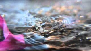 Canon T1i / Splendor of Splash