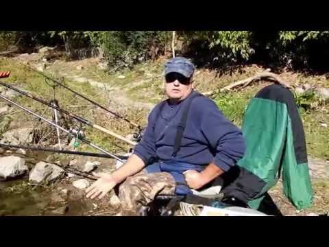 ловля подуста в реке тиса видео