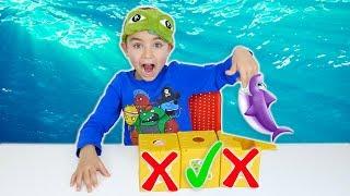 DONT Choose The Wrong MYSTERY BOX ! Ne jamais choisir la mauvaise boîte mystère !
