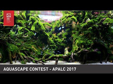 aquascape-contest---apalc-2017