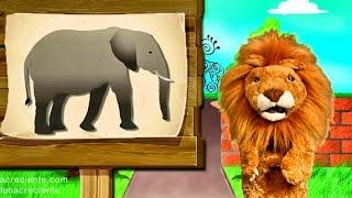 Los niños conocen El Elefante  - Animales del Zoo con Lorenzoo - Videos Educativos para Niños