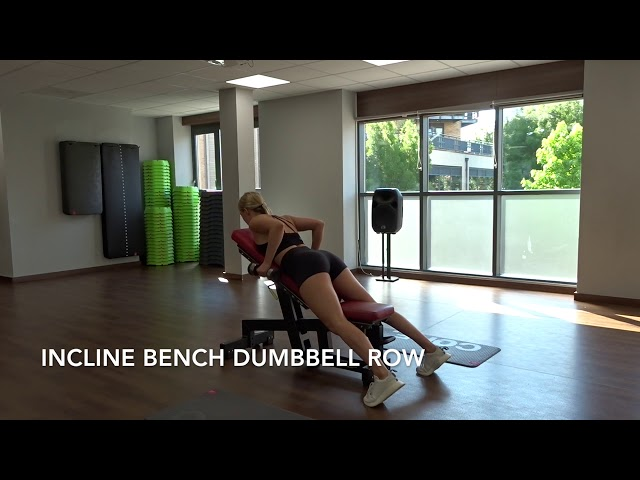 Incline Bench Dumbbell Row
