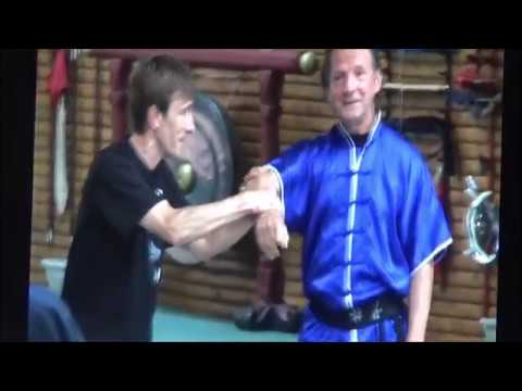 GM Walter Toch with workshop about using qi in martial arts