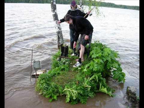 Лучшие рыболовные базы на Икшинском водохранилище
