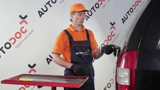 Diesel Glühkerzen beim OPEL ZAFIRA A (F75_) montieren: kostenlose Video