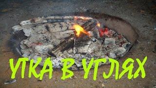Утка в фольге на углях! Рецепт приготовления утки на природе да на углях! Готовим на природе!