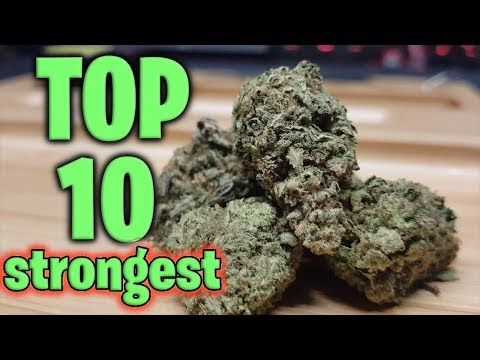 World's Top 10 STRONGEST Strains
