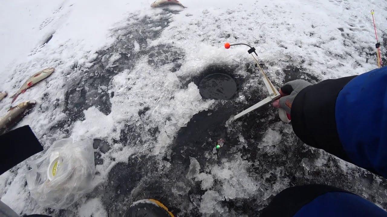 первый лед 2021 зимняя рыбалка
