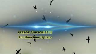 Suara Cepat Inap Klimax I.02 2018 STEREO R/L (Suara Dalam / Suara Luar) | HQ Swiftlet Pro 2018