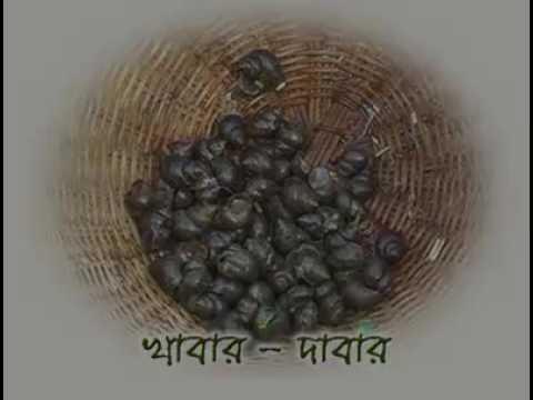 হাস পালন বিস্তারিত ইন্ডিয়া thumbnail